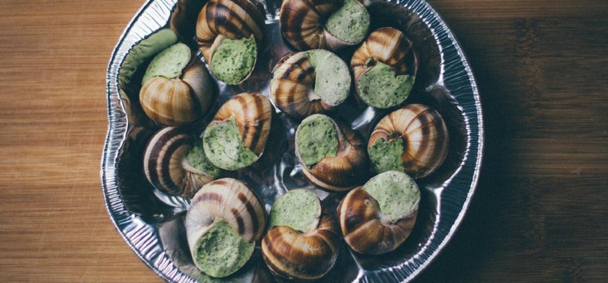 Voyage culinaire enFrance